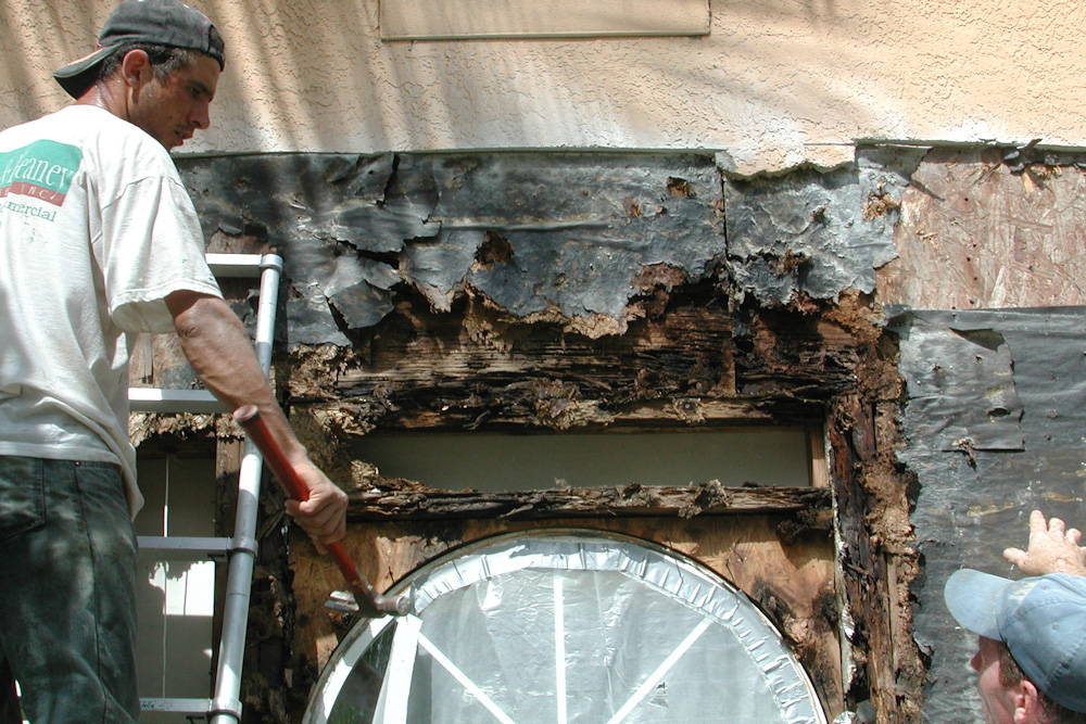 Inspection on a rotted wooden house